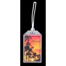 Sunset Palms Tag